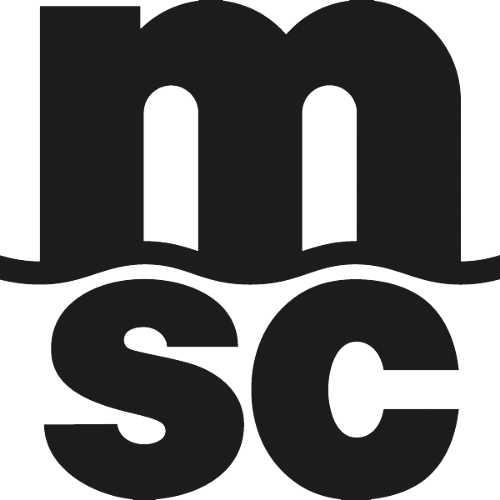 MSC Belgium NV